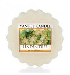 Prezenty- Wosk linden tree