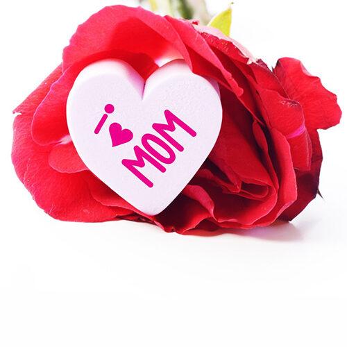 kwiaty_na_dzien_matki