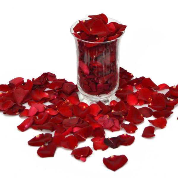 Płatki róż i Wazon