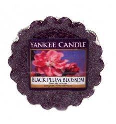 Prezenty- Wosk black plum blossom