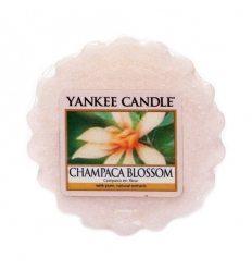 Prezenty- Wosk champaca blossom