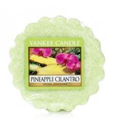 Prezenty- Wosk pineapple cilantro