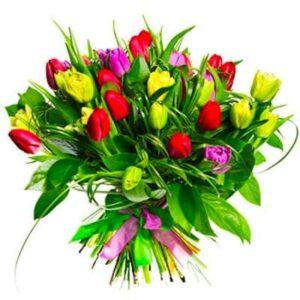 Kwiaty- Bukiet 30 tulipanów+ Dodatki