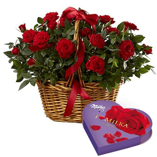 Kosze kwiatowe- Kosz róż doniczkowych+ serce