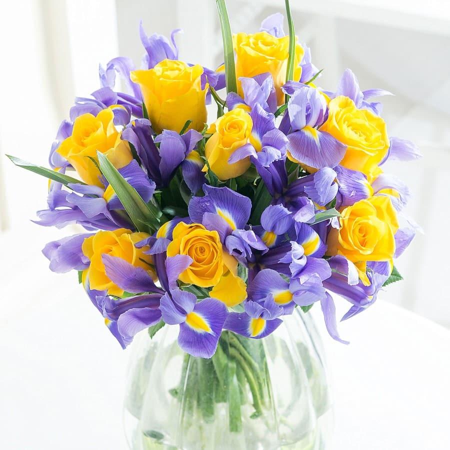 december birthday flower - HD2000×2000